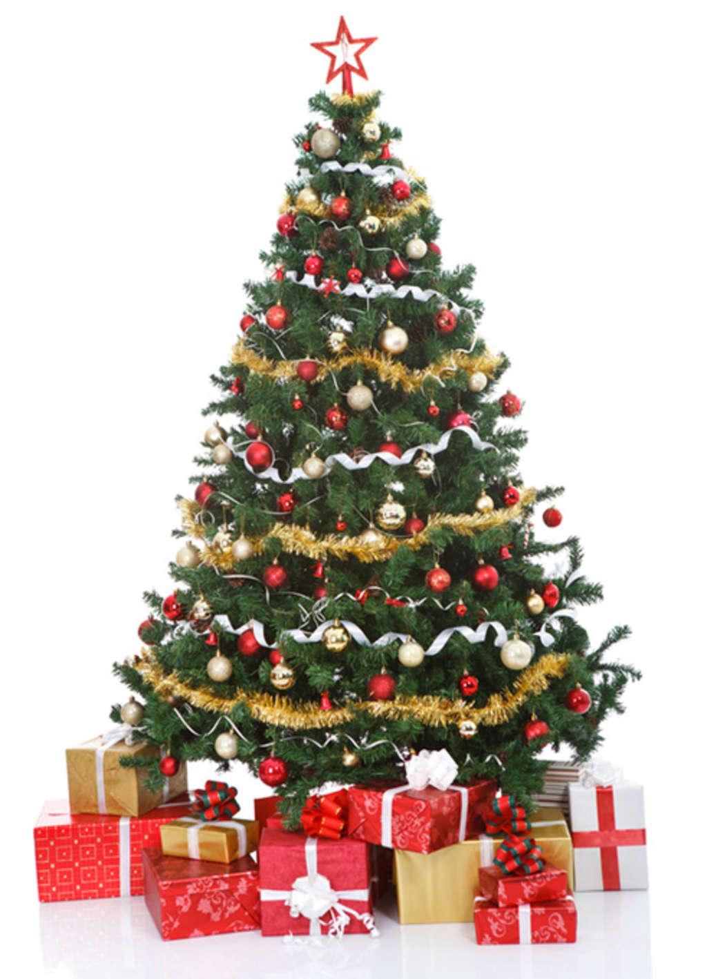 Davos weihnachtsbaum my blog for Weihnachtsbaum vorhang